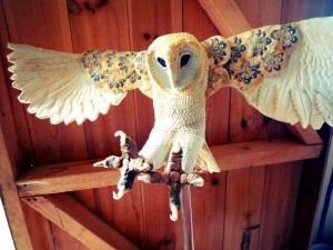apwebsite-owl